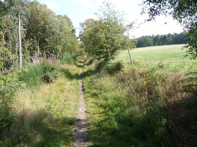 Path near Eastridge Wood