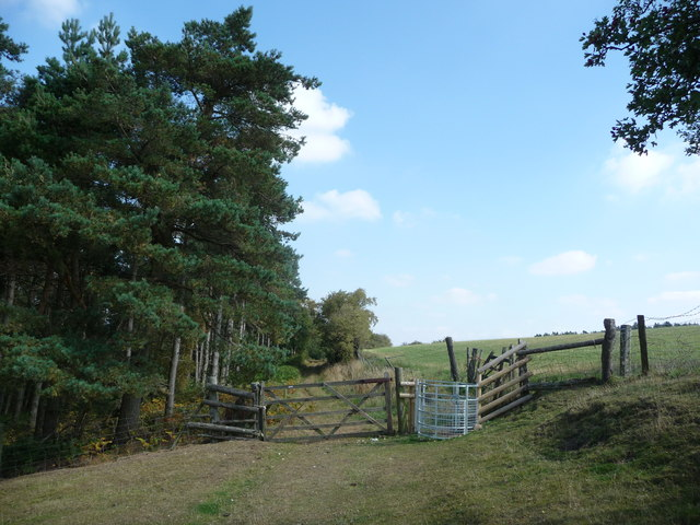New kissing gate near Eastridge Wood
