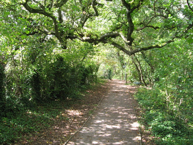 Path across Bull Cliff