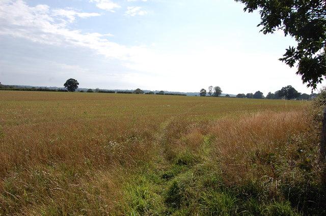 Footpath to Newenden