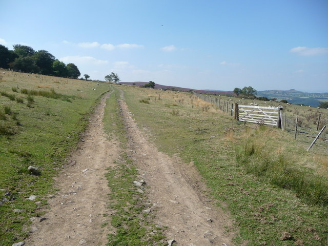 Track up to Blakemoorgate in summer