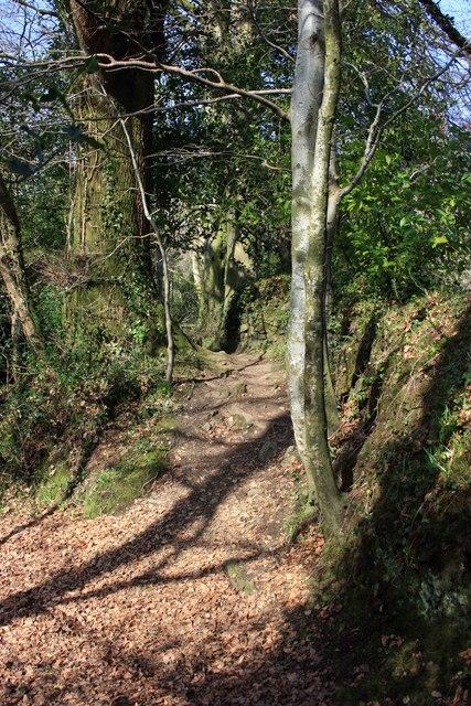 Path alongside the Glaze Brook