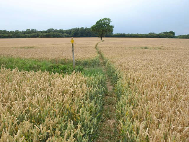 Footpath near Becca Home Farm