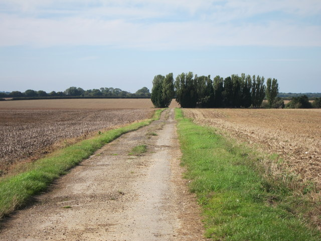 Farm track off Faversham Road