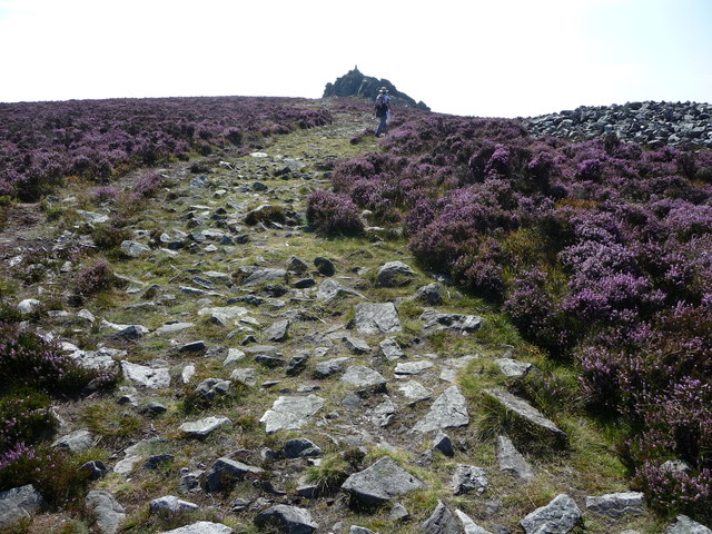 Rocky path on the Stiperstones north of Manstone Rock