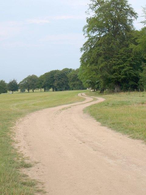 Footpath in Bramham Park