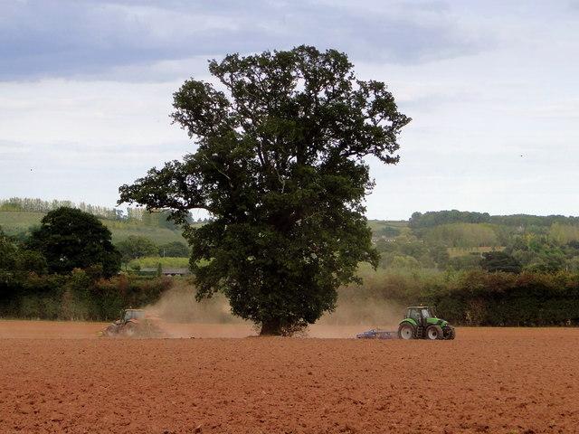 Ploughing, Michdene Farm