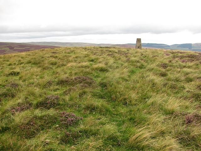 Summit, Forside Hill