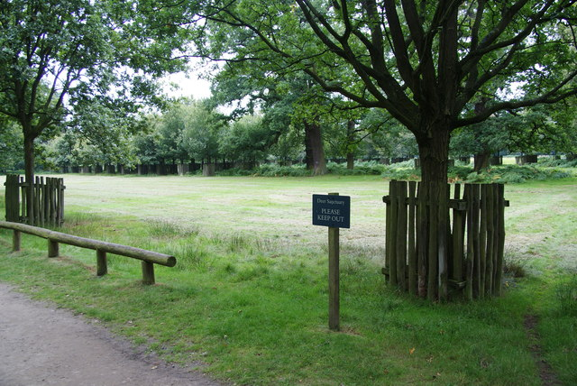 Deer sanctuary at Dunham Massey
