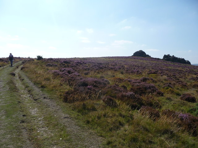 Approaching Nipstone Rock on the Stiperstones ridge