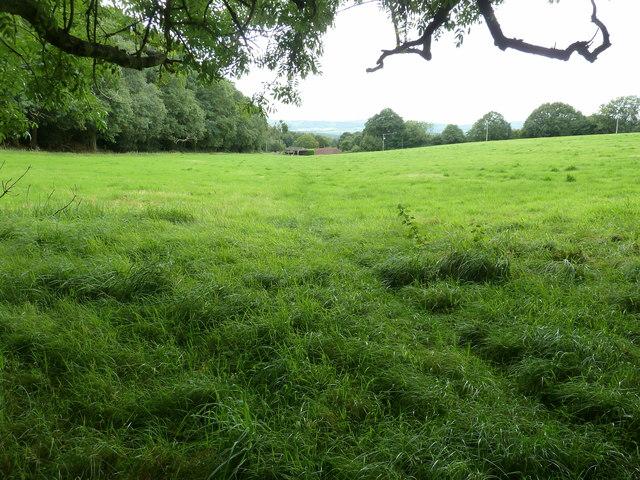 Stubb Hill Farm