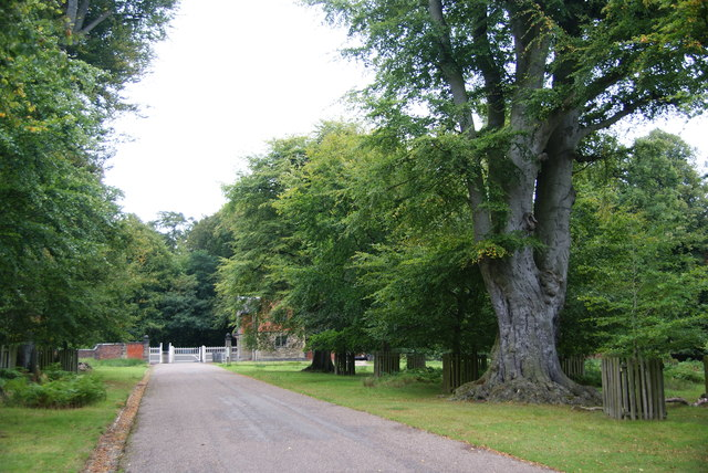 The north eastern gate of Dunham Park