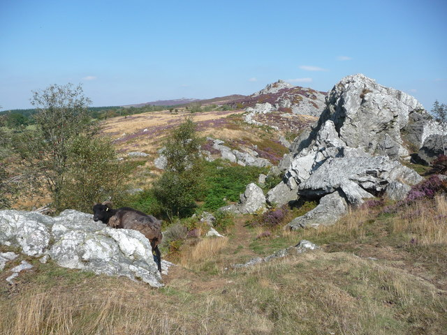 Down beyond The Rock on Stiperstones Ridge