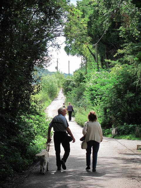 Lullingstone Lane