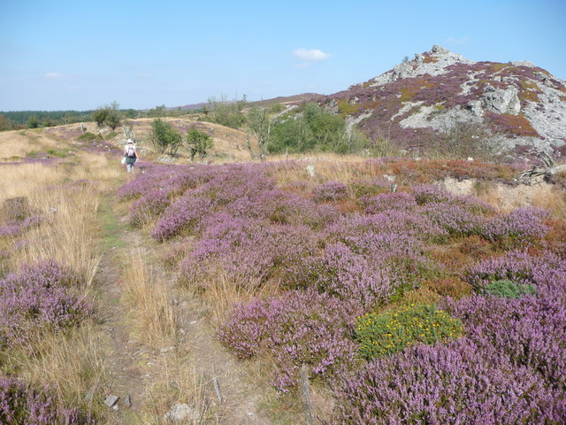 Walking near The Rock on Stiperstones ridge