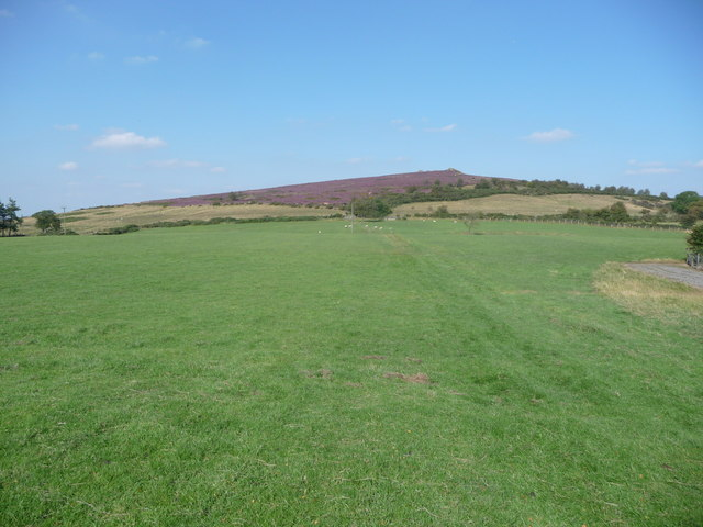 On the Shropshire Way south of the main Stiperstones ridge