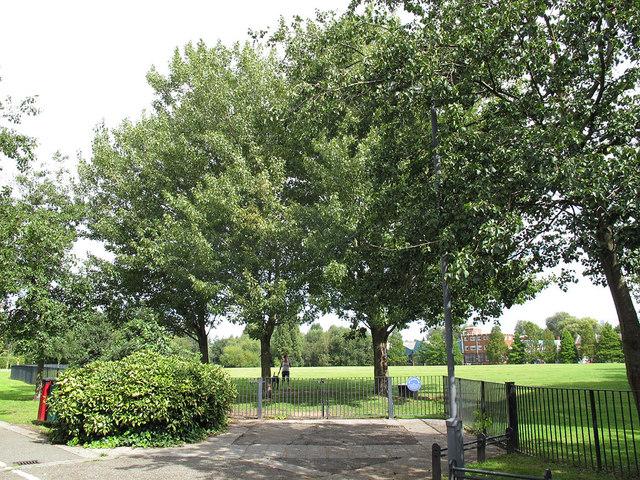 Memorial trees in King George's Park