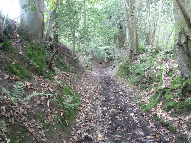 Sharver's Lane Restricted Byway