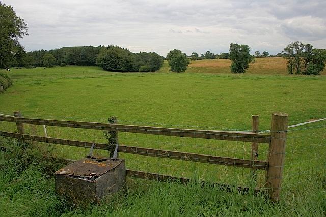 Field, New Zealand Farm