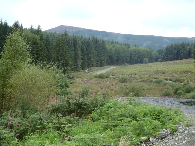 Forestry road twisting alongside the Little Water of Fleet