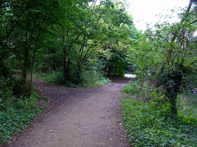 Path in Elthorne Park