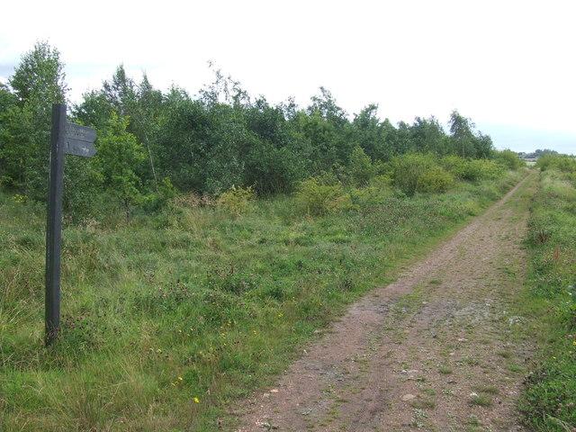 Bridleway near Houghton-le-Spring