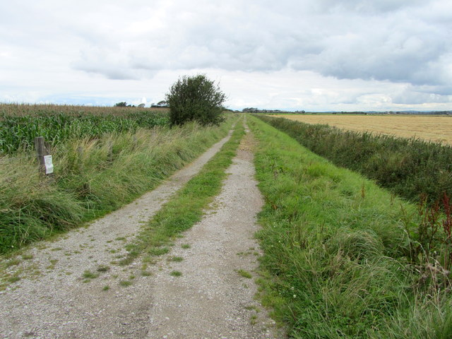Bridleway leading North from Gulf Lane