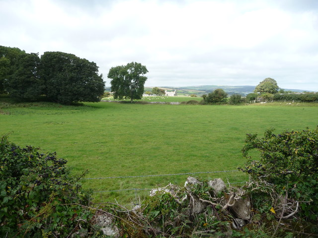 View over the hedgeline to Hen Capel