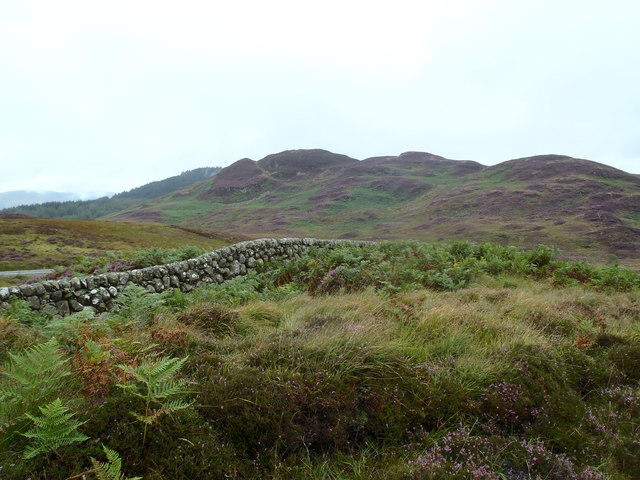 A fine Galloway Dyke and Craig of Grobdale in purple heather
