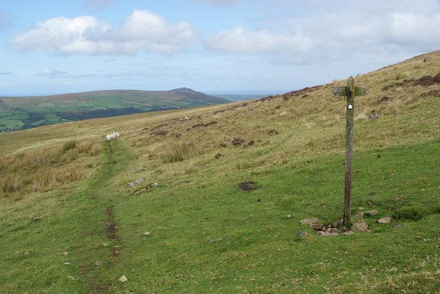 Path on the side of Foel Eryr