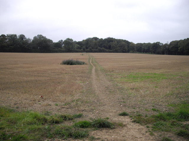 The Icknield Way Trail, near Studham