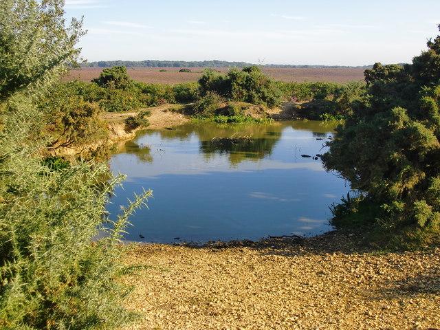 Small pond near Turf Hill car park