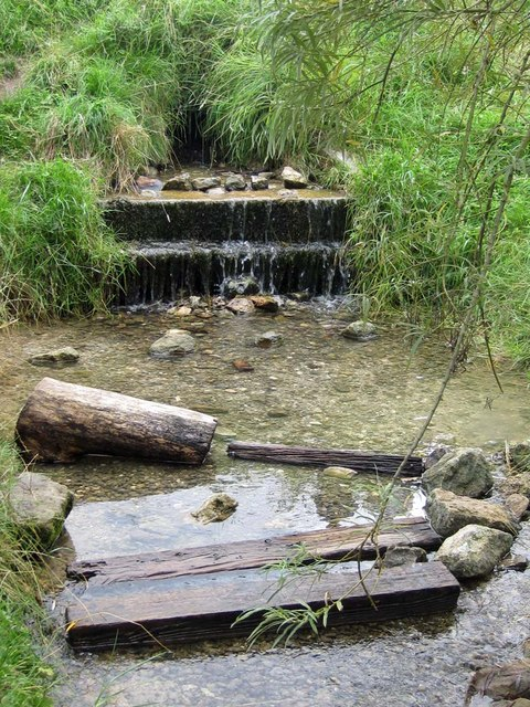 Wharram Stream