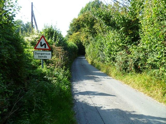 Mouse Lane