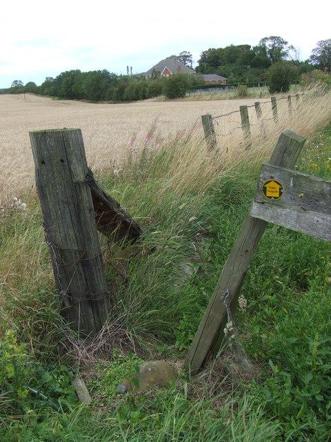 Public footpath near Great Lumley