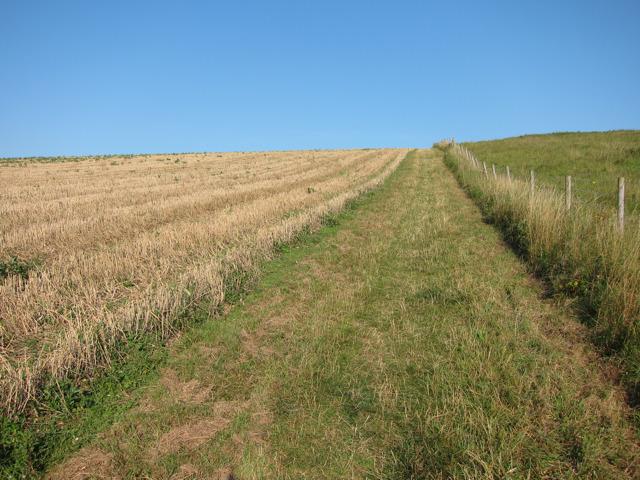Farmland near Foredown Road