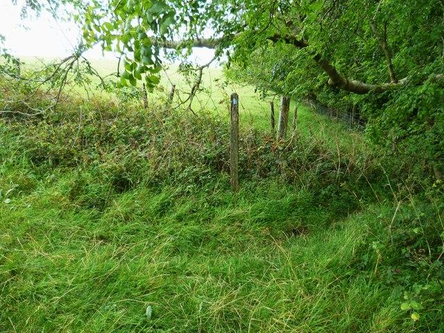 Worn out waymark in field corner