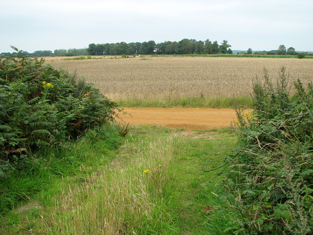 View towards Broad Wood, Castle Rising
