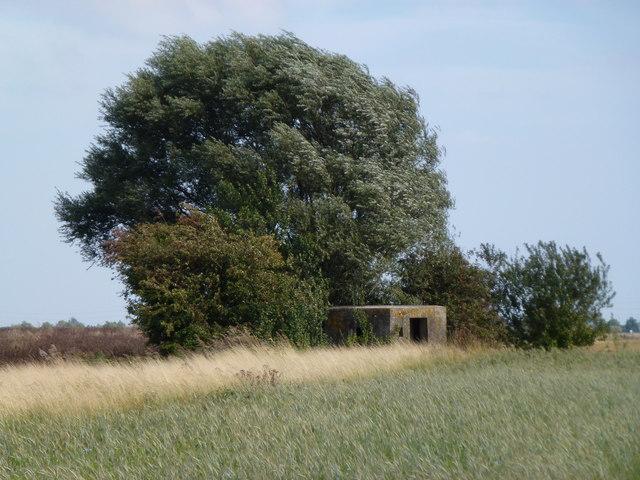 Farmland, trees and pillbox