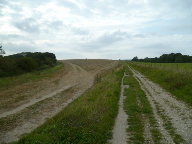 Bridleway diverges from South Downs Way near Lion's Bank