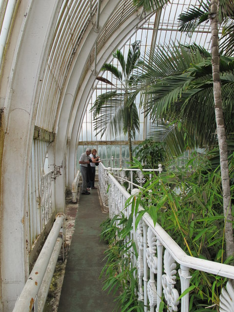 Palm house upper level