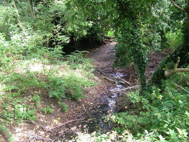 Waterway junction in No Man's Meadow