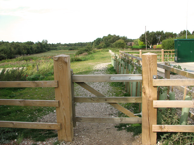 Dismantled railway line, Dersingham