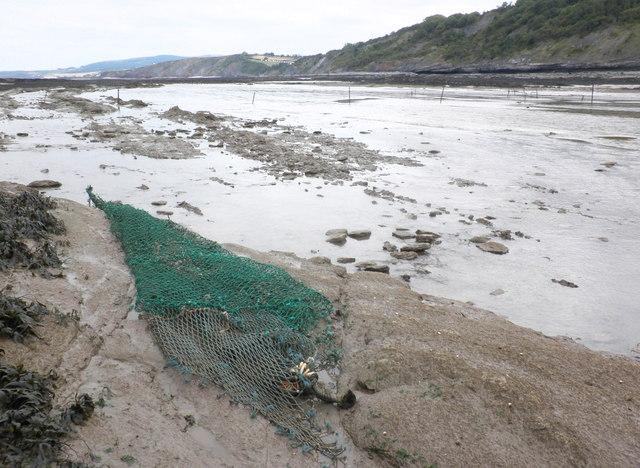 Fish trap, Blue Anchor Bay