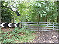 SU8424 : Gates at the northern end of footpath 1144 by Dave Spicer