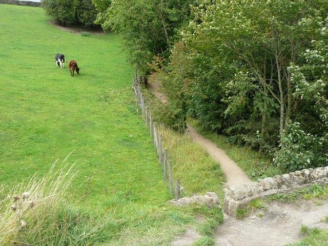 Footpath at Dowley Gap, Bingley