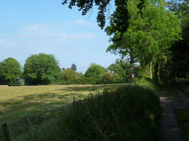 Field by bridleway at Great Barn Farm