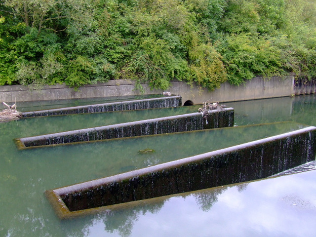 Weir at Osterley Lock