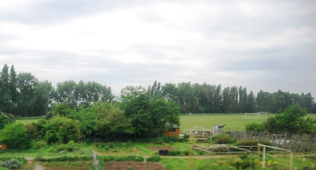 Allotments and Duke's Meadow Sports Ground