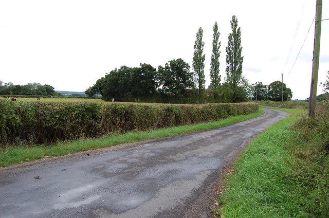 Wassell Lane
